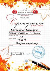 сертификат.2