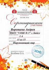 сертификат.7